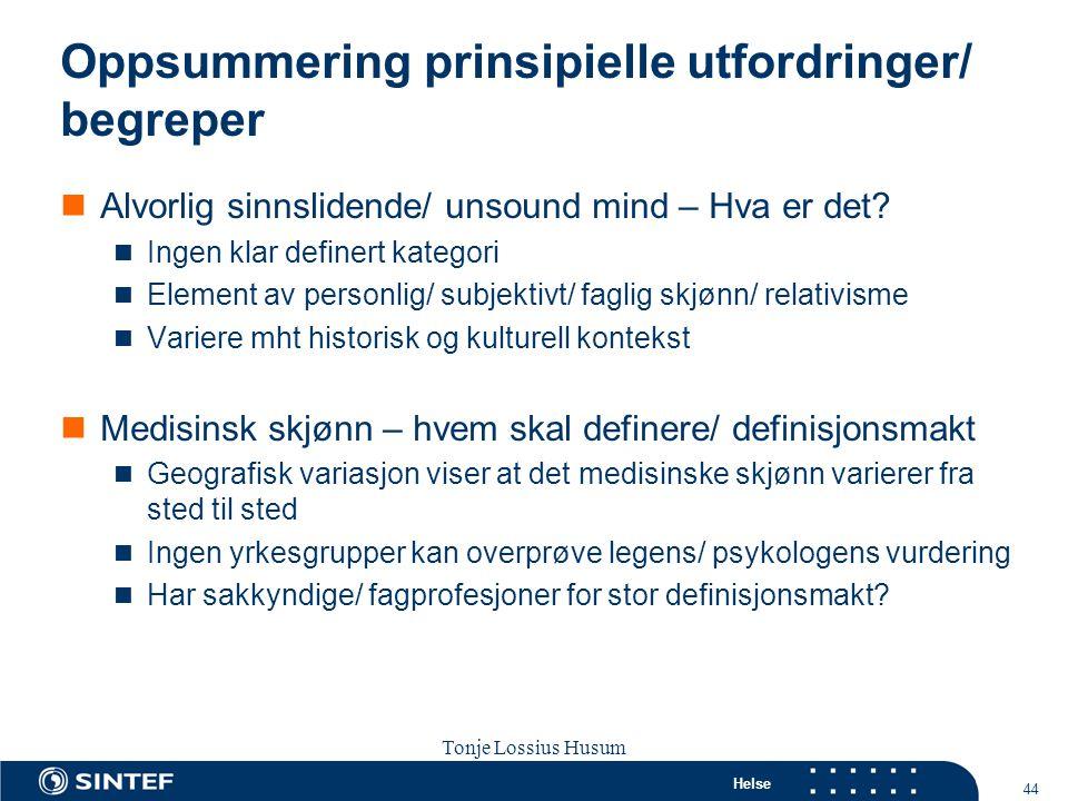 Oppsummering prinsipielle utfordringer/ begreper