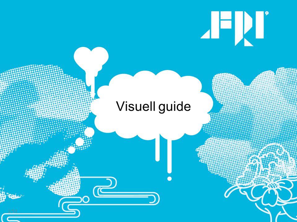 Visuell guide 1/53