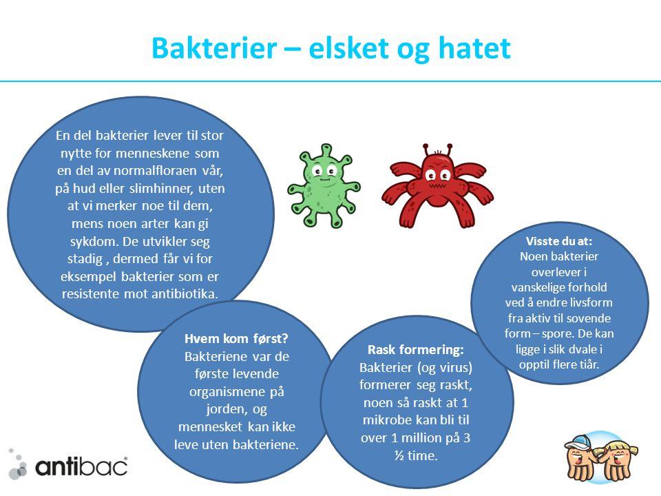 Bakterier – elsket og hatet
