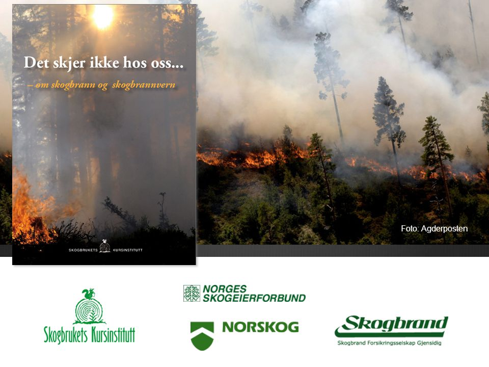 Om skogbrann og skogbrannvern