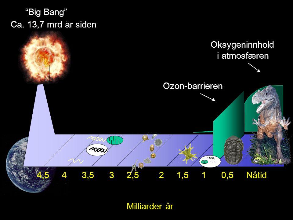 Big Bang Ca. 13,7 mrd år siden. Oksygeninnhold. i atmosfæren. Ozon-barrieren.