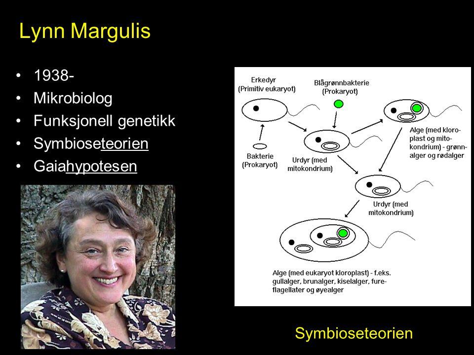 Lynn Margulis 1938- Mikrobiolog Funksjonell genetikk Symbioseteorien