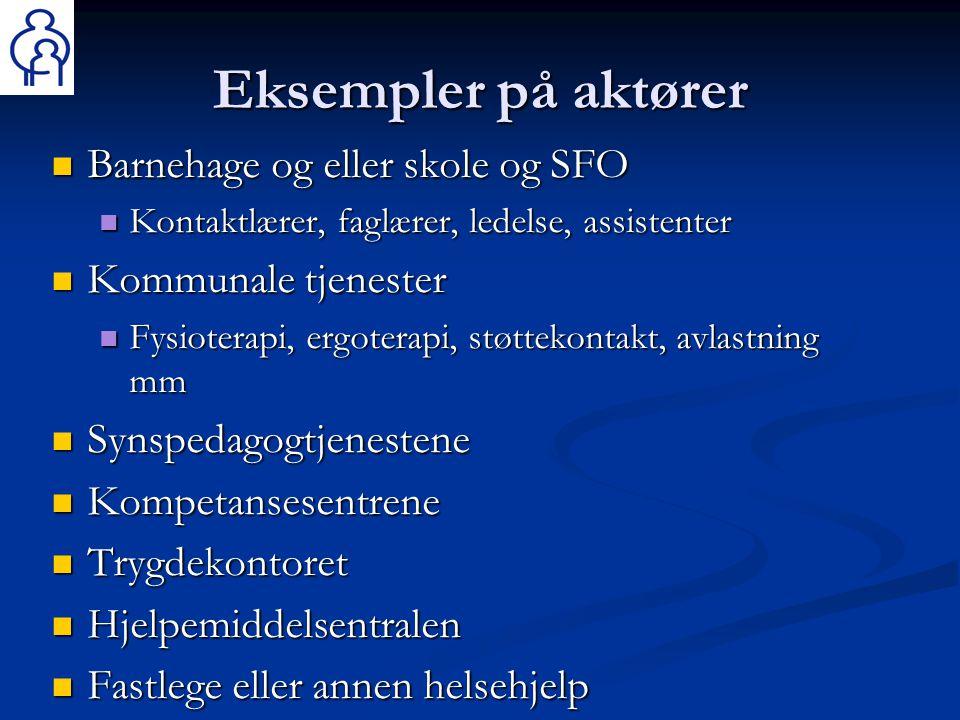 Eksempler på aktører Barnehage og eller skole og SFO