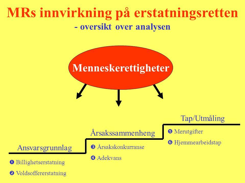 MRs innvirkning på erstatningsretten - oversikt over analysen