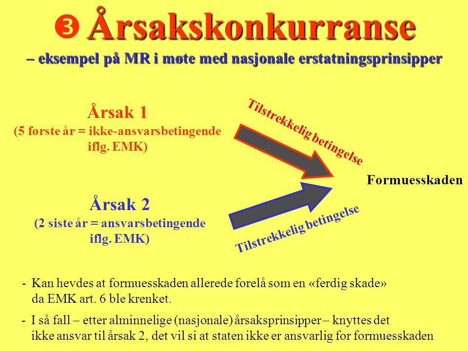  Årsakskonkurranse – eksempel på MR i møte med nasjonale erstatningsprinsipper