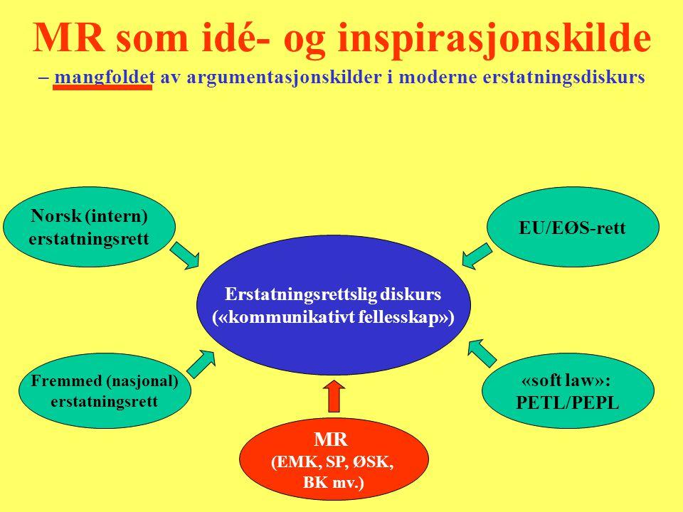 Erstatningsrettslig diskurs («kommunikativt fellesskap»)