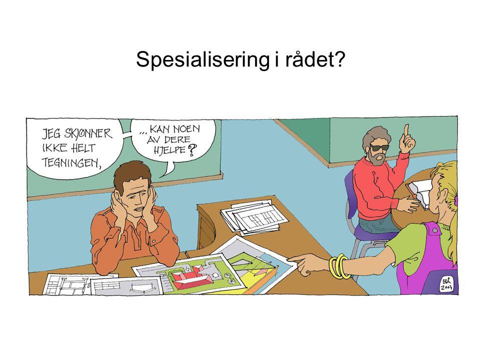 Spesialisering i rådet