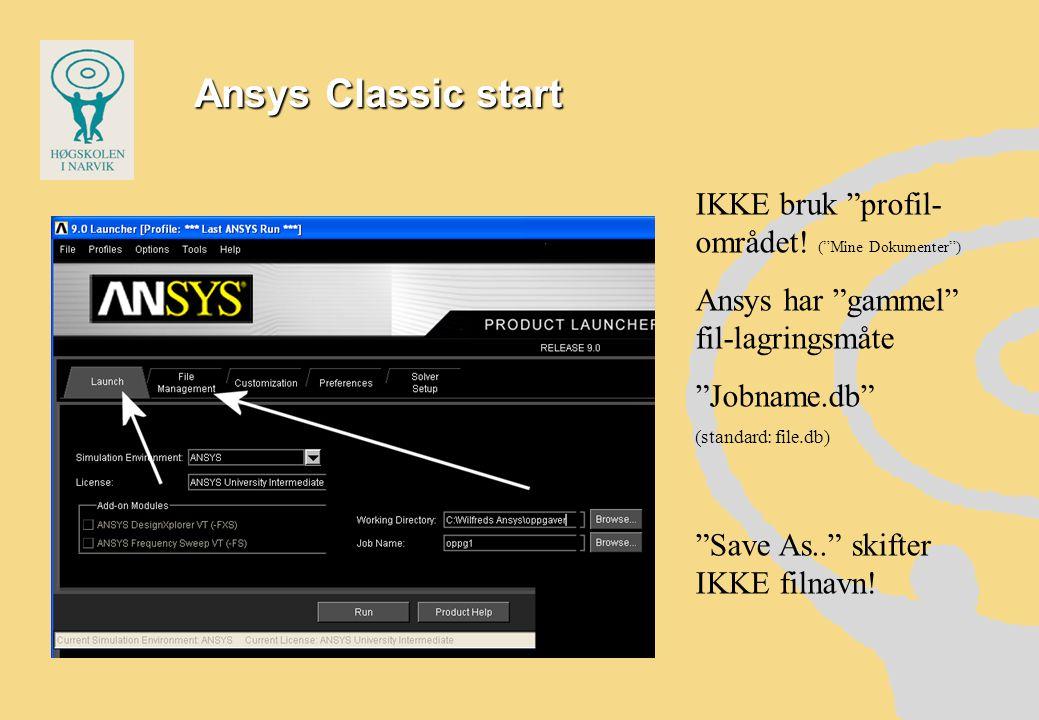 Ansys Classic start IKKE bruk profil-området! ( Mine Dokumenter )