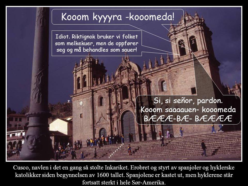 Kooom kyyyra -kooomeda!