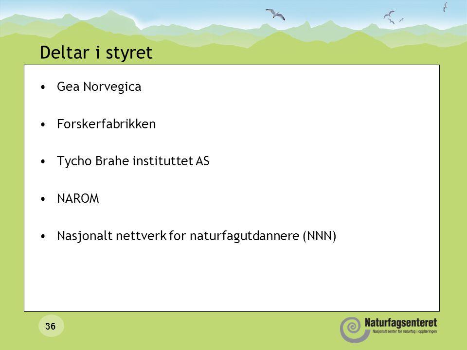 Deltar i styret Gea Norvegica Forskerfabrikken