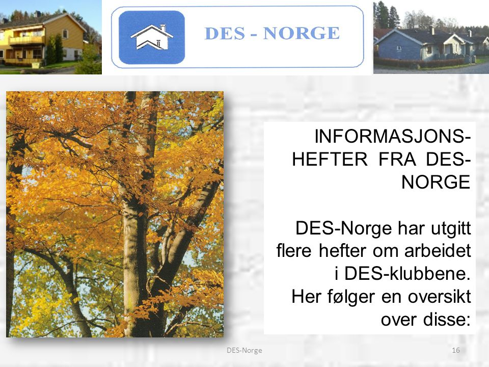 INFORMASJONS-HEFTER FRA DES-NORGE