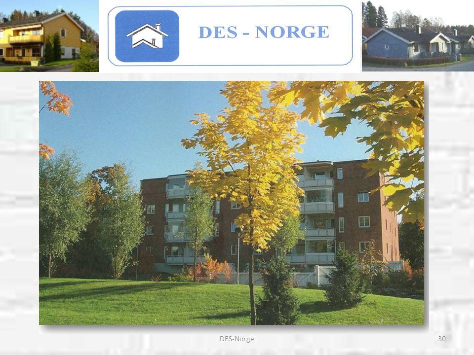 DES-Norge
