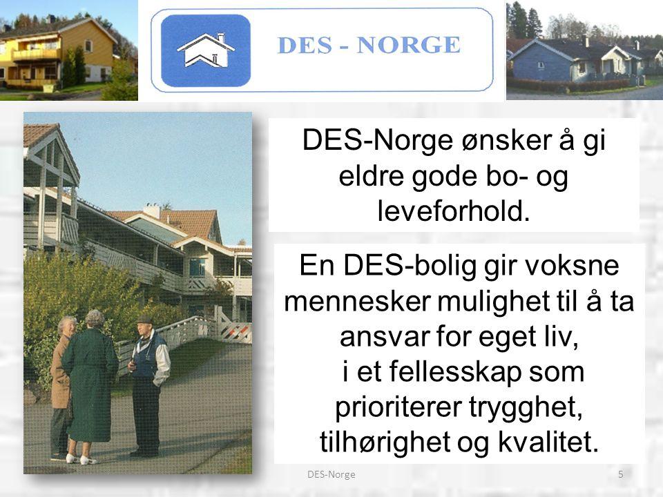 DES-Norge ønsker å gi eldre gode bo- og leveforhold.