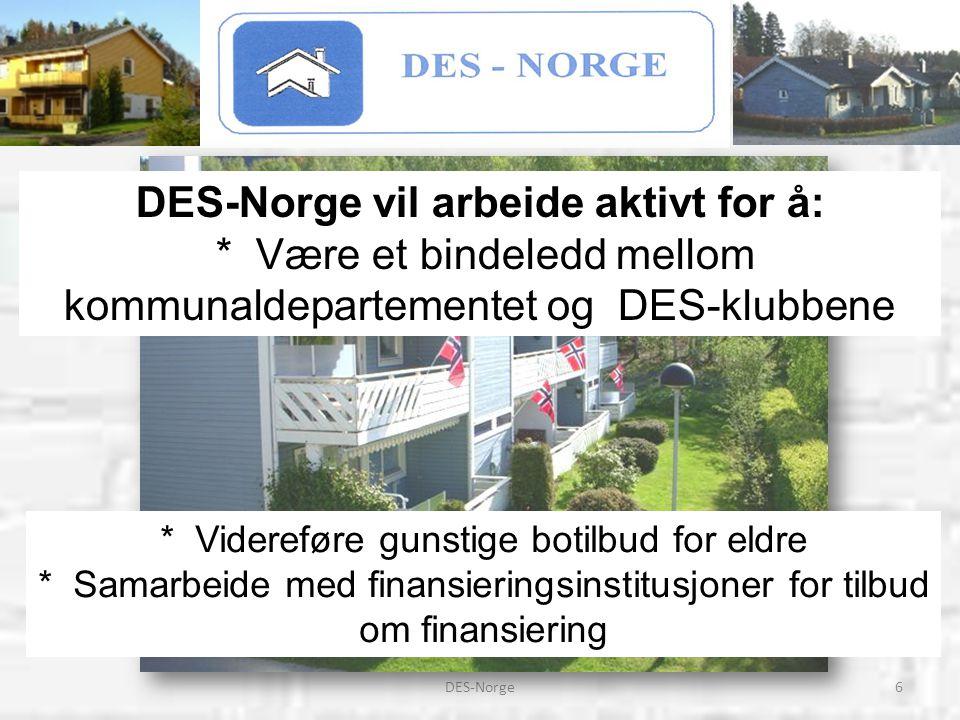 DES-Norge vil arbeide aktivt for å: