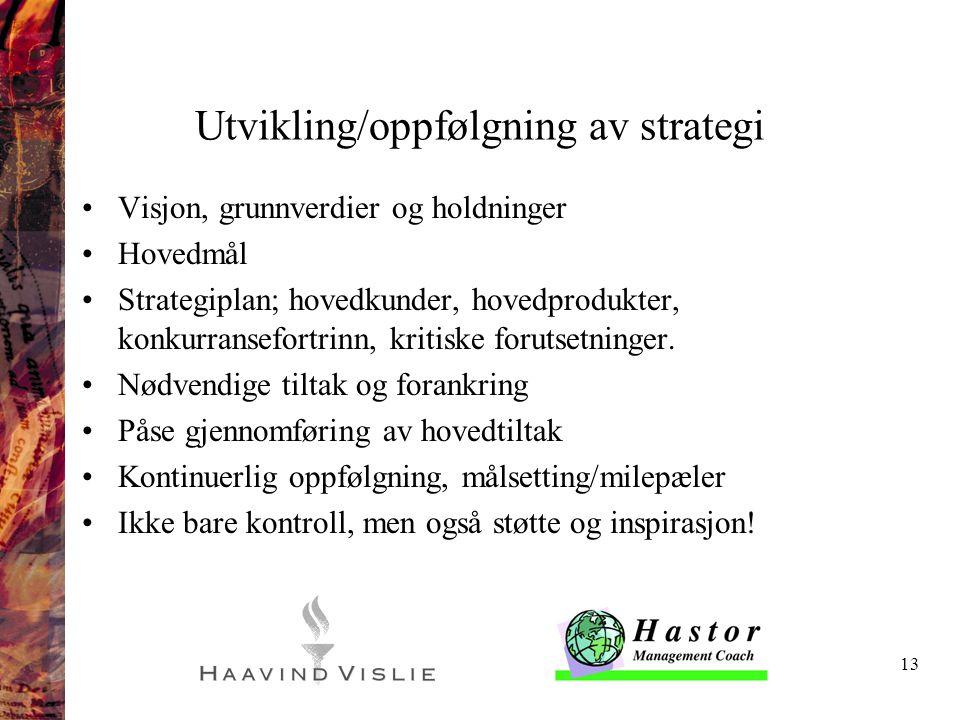 Utvikling/oppfølgning av strategi