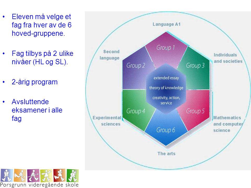 Eleven må velge et fag fra hver av de 6 hoved-gruppene.