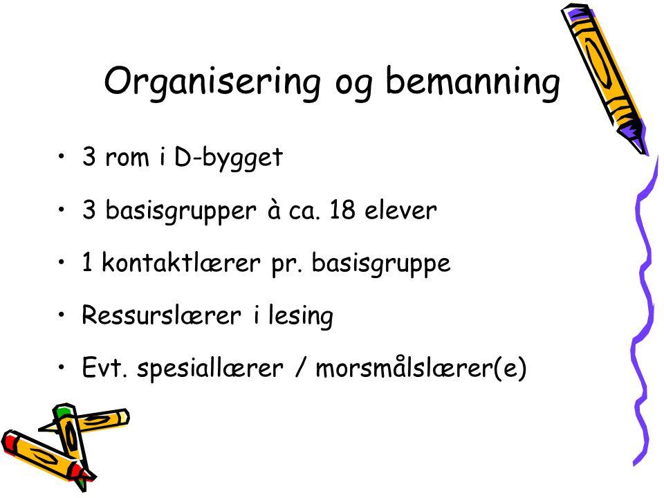 Organisering og bemanning