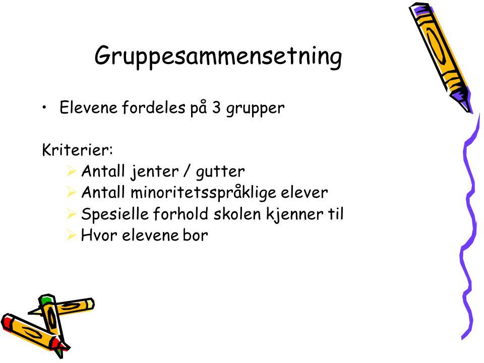Gruppesammensetning Elevene fordeles på 3 grupper Kriterier: