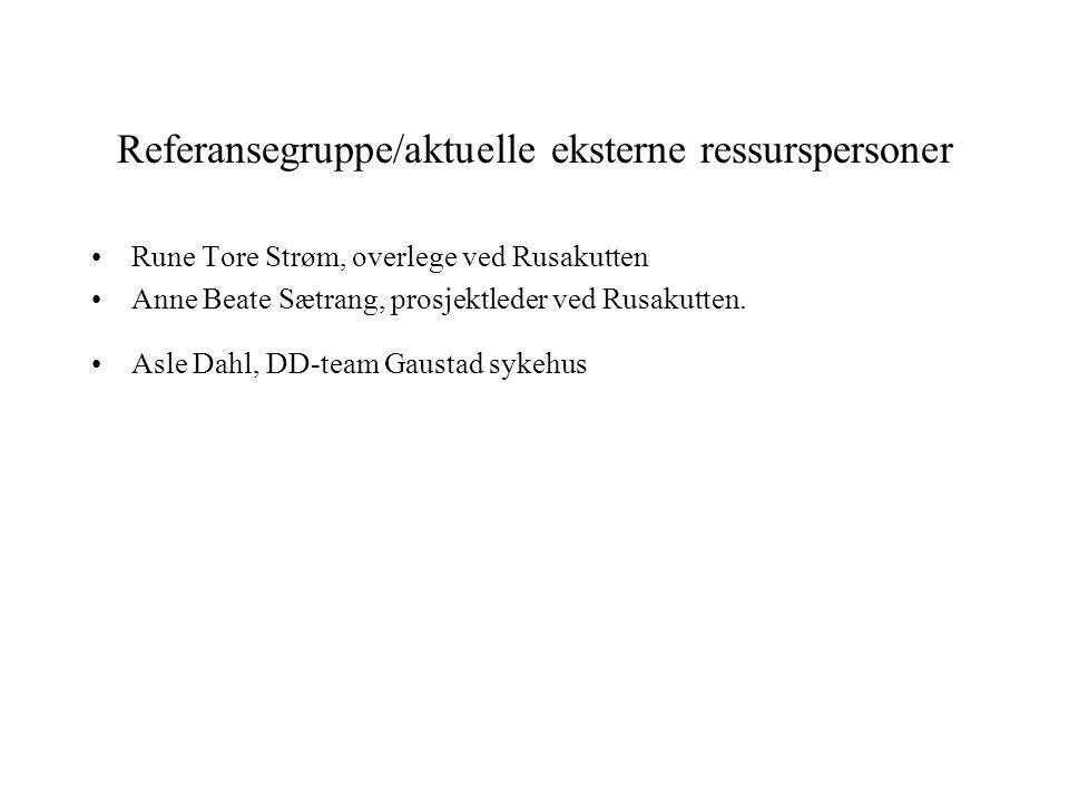Referansegruppe/aktuelle eksterne ressurspersoner