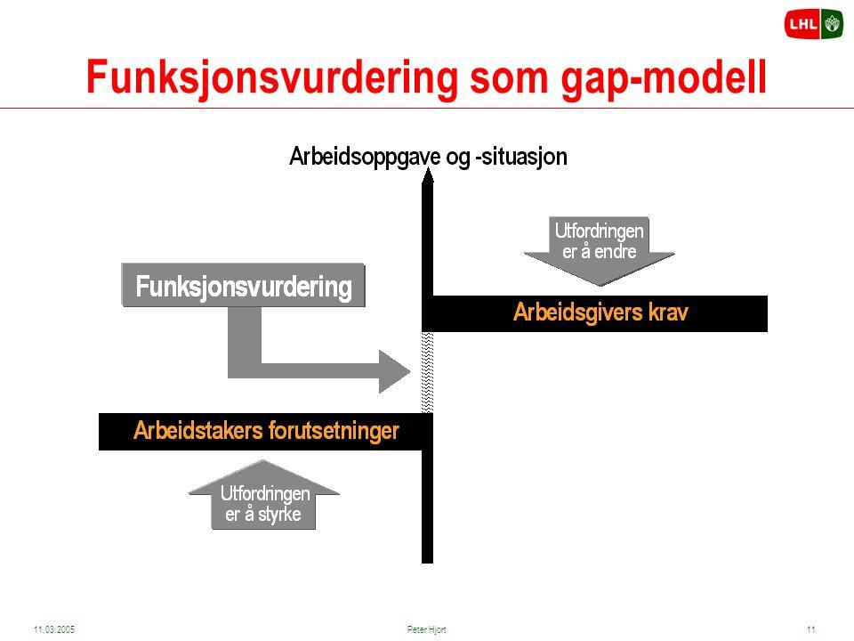 Funksjonsvurdering som gap-modell