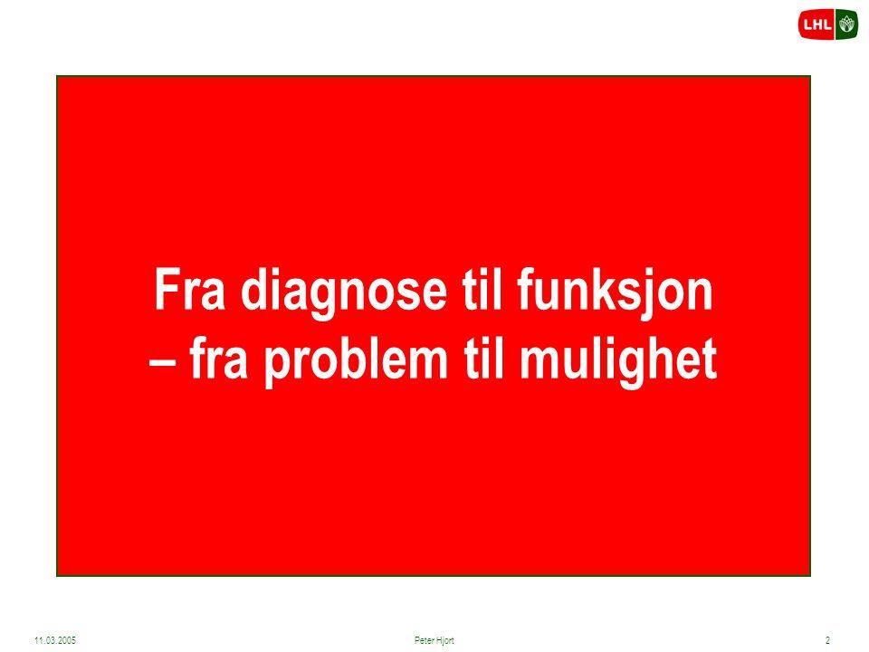 Fra diagnose til funksjon – fra problem til mulighet