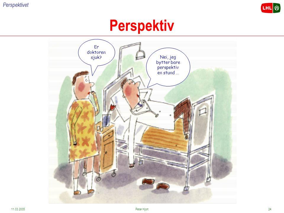 Funksjonsvurderingsperspektivet