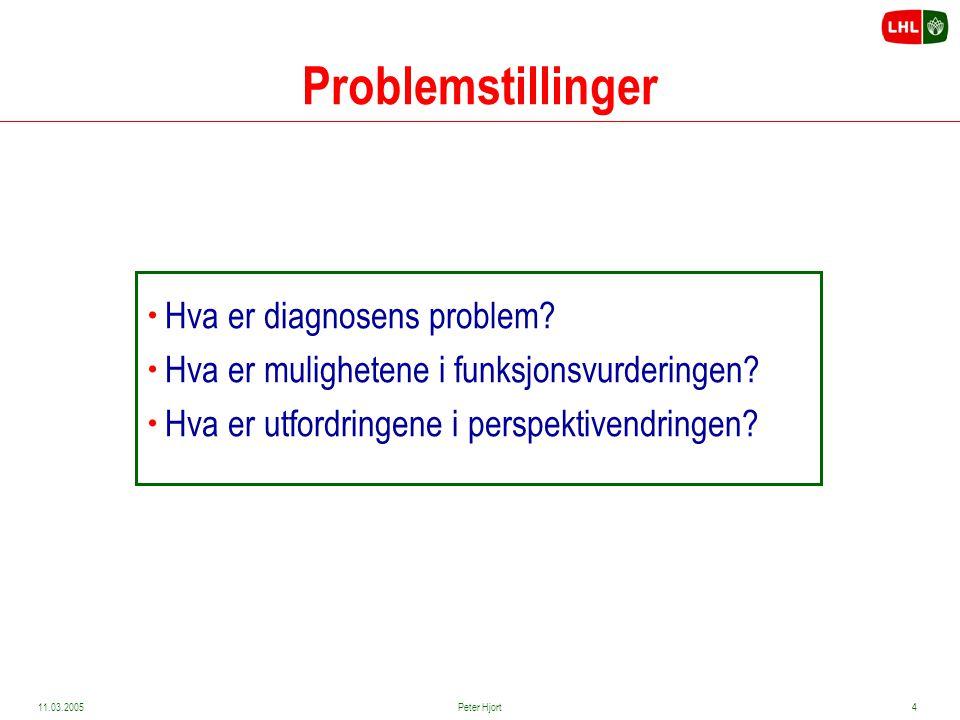Problemstillinger Hva er diagnosens problem