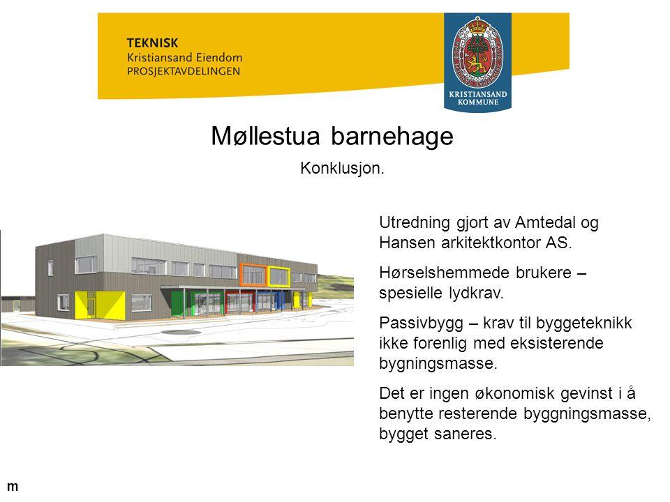 Møllestua barnehage Konklusjon.