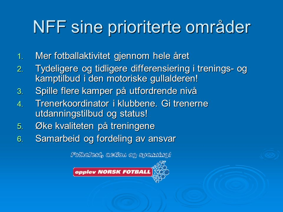 NFF sine prioriterte områder