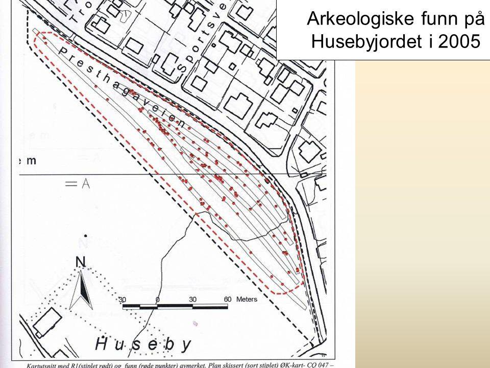 Arkeologiske funn på Husebyjordet i 2005