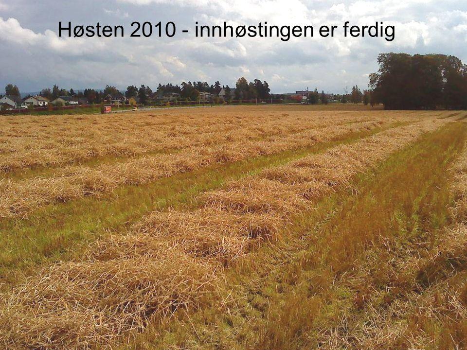 Høsten 2010 - innhøstingen er ferdig