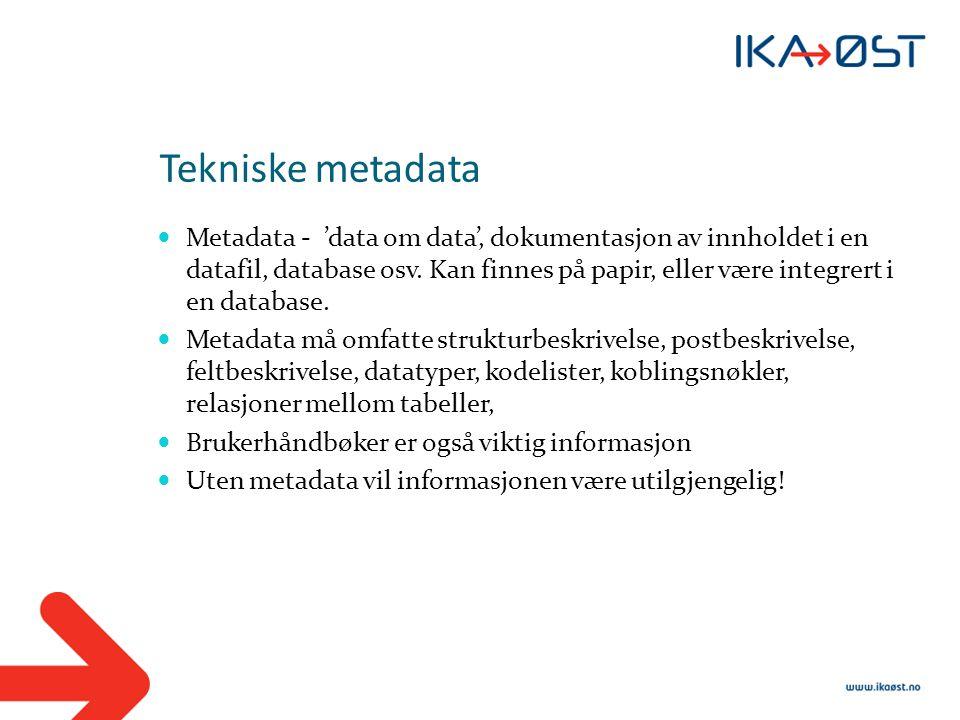 Tekniske metadata