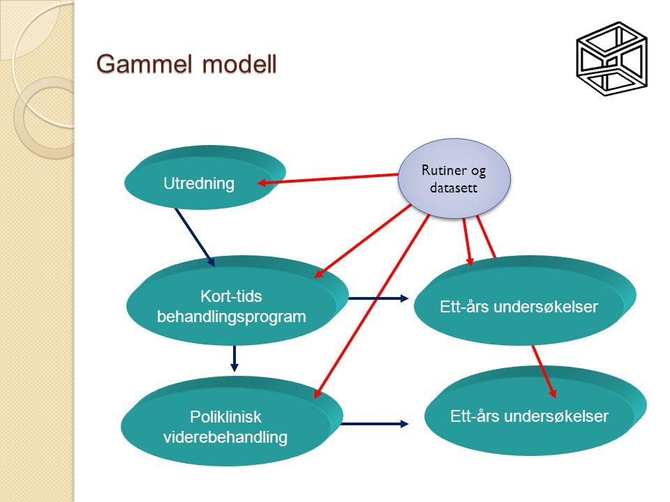 Gammel modell Utredning Kort-tids Ett-års undersøkelser