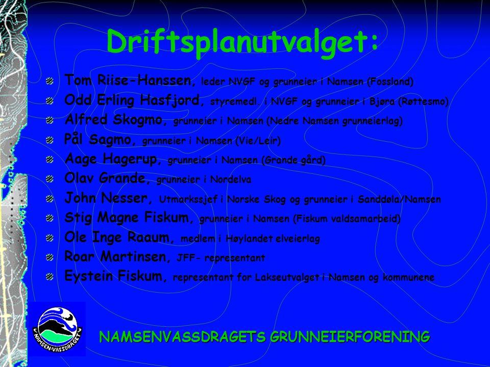 Driftsplanutvalget: Tom Riise-Hanssen, leder NVGF og grunneier i Namsen (Fossland)
