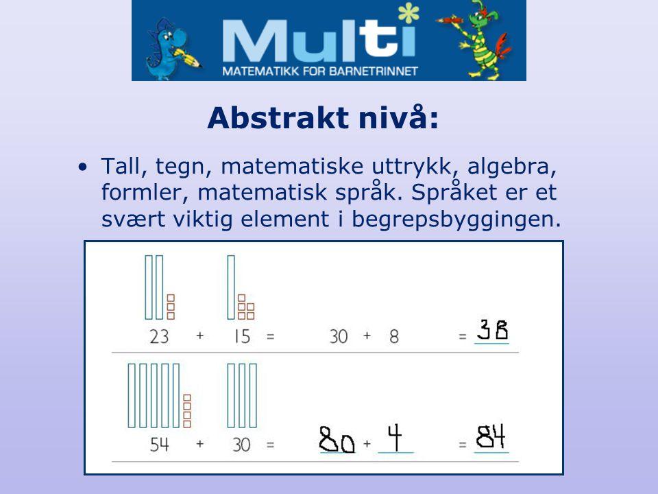 Abstrakt nivå: Tall, tegn, matematiske uttrykk, algebra, formler, matematisk språk. Språket er et svært viktig element i begrepsbyggingen.