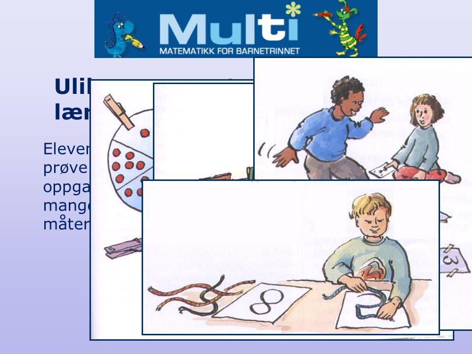 Ulike representasjoner og læringsstiler