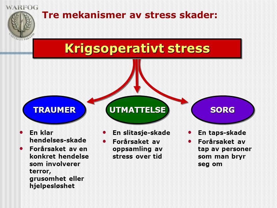 Tre mekanismer av stress skader: