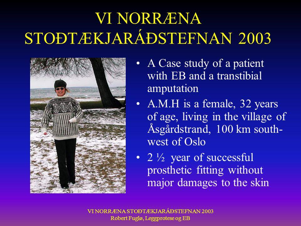 VI NORRÆNA STOÐTÆKJARÁÐSTEFNAN 2003