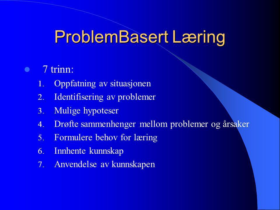 ProblemBasert Læring 7 trinn: Oppfatning av situasjonen