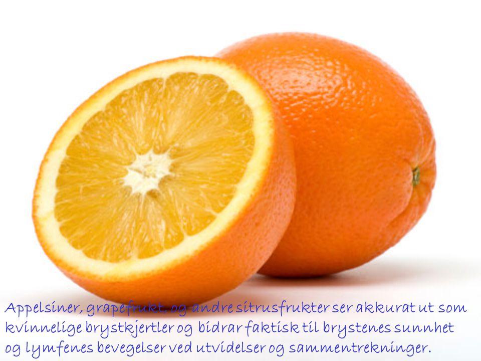 Appelsiner, grapefrukt, og andre sitrusfrukter ser akkurat ut som