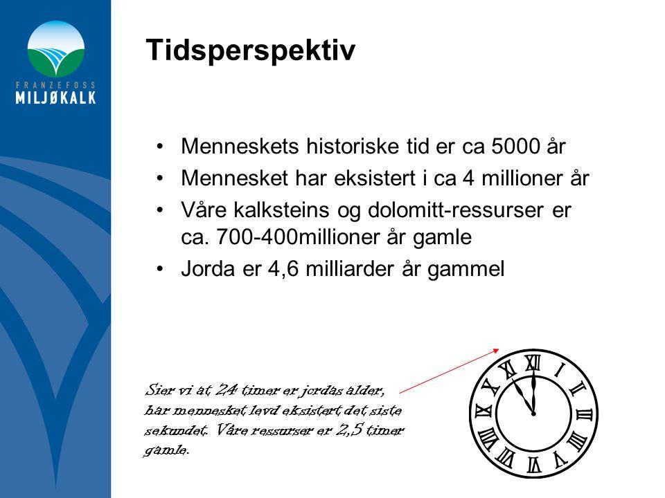 Tidsperspektiv Menneskets historiske tid er ca 5000 år
