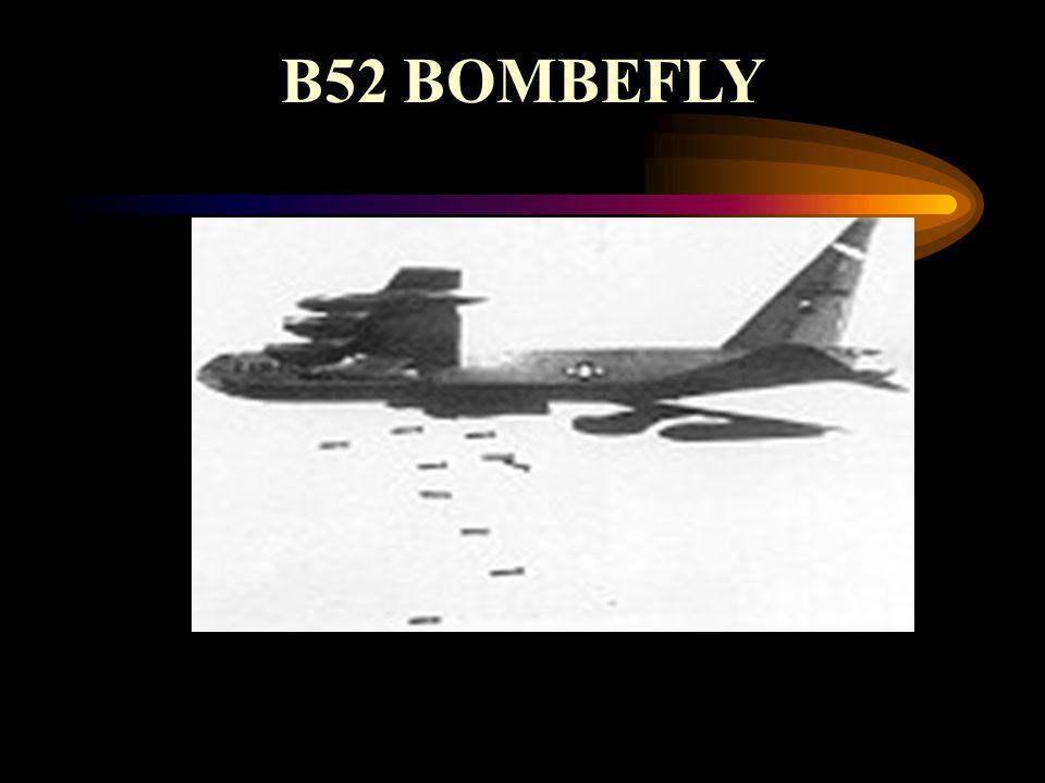 B52 BOMBEFLY