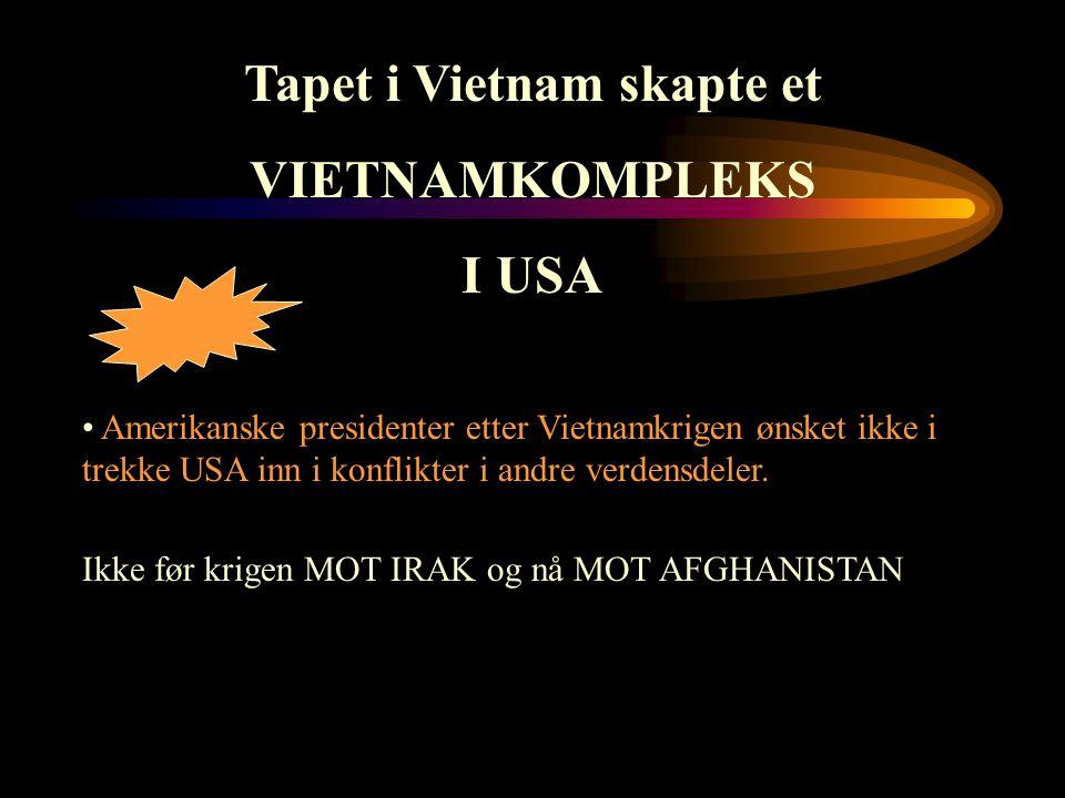 Tapet i Vietnam skapte et