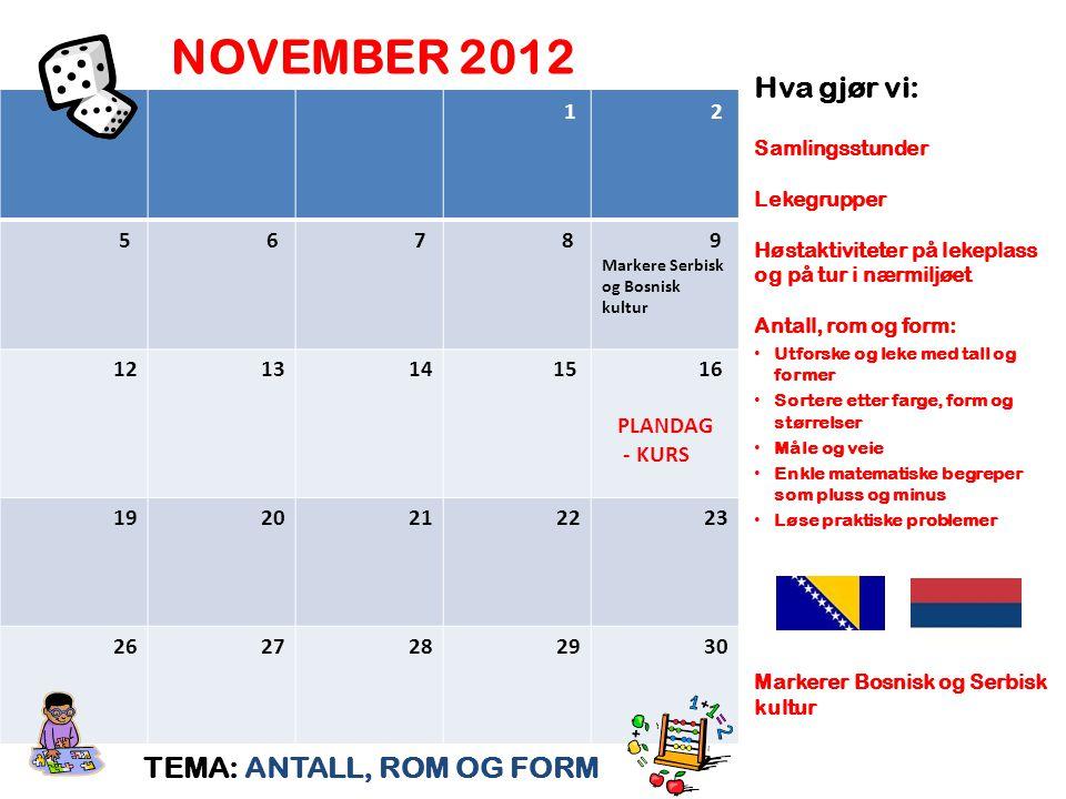 NOVEMBER 2012 Hva gjør vi: TEMA: ANTALL, ROM OG FORM 1 2 5 6 7 8 9 12