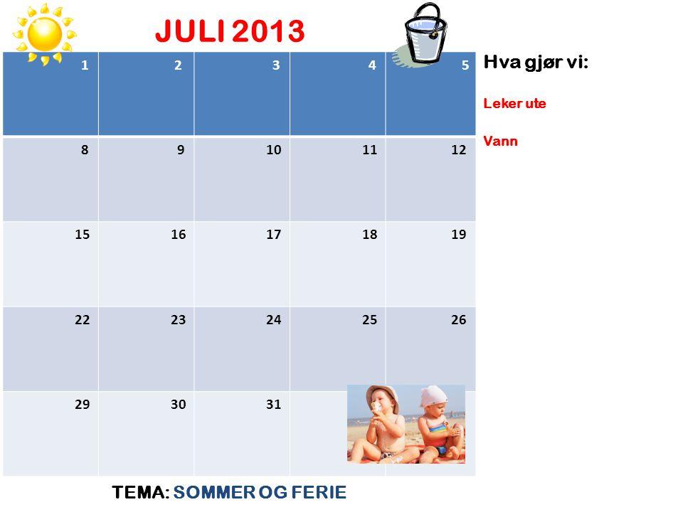 JULI 2013 TEMA: SOMMER OG FERIE Hva gjør vi: 1 2 3 4 5 8 9 10 11 12 15