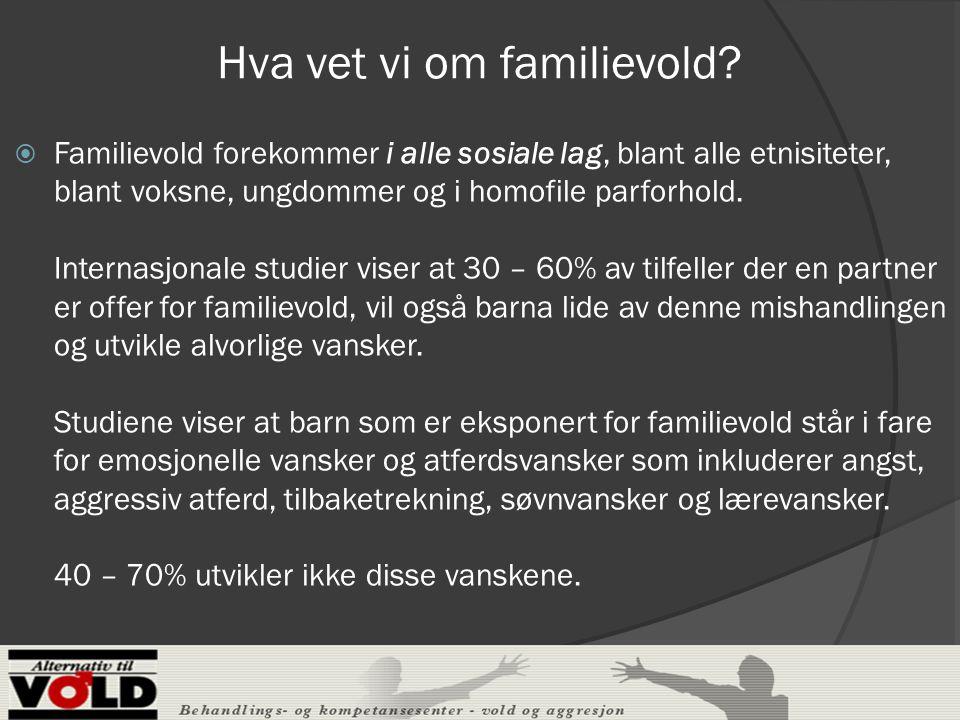 Hva vet vi om familievold