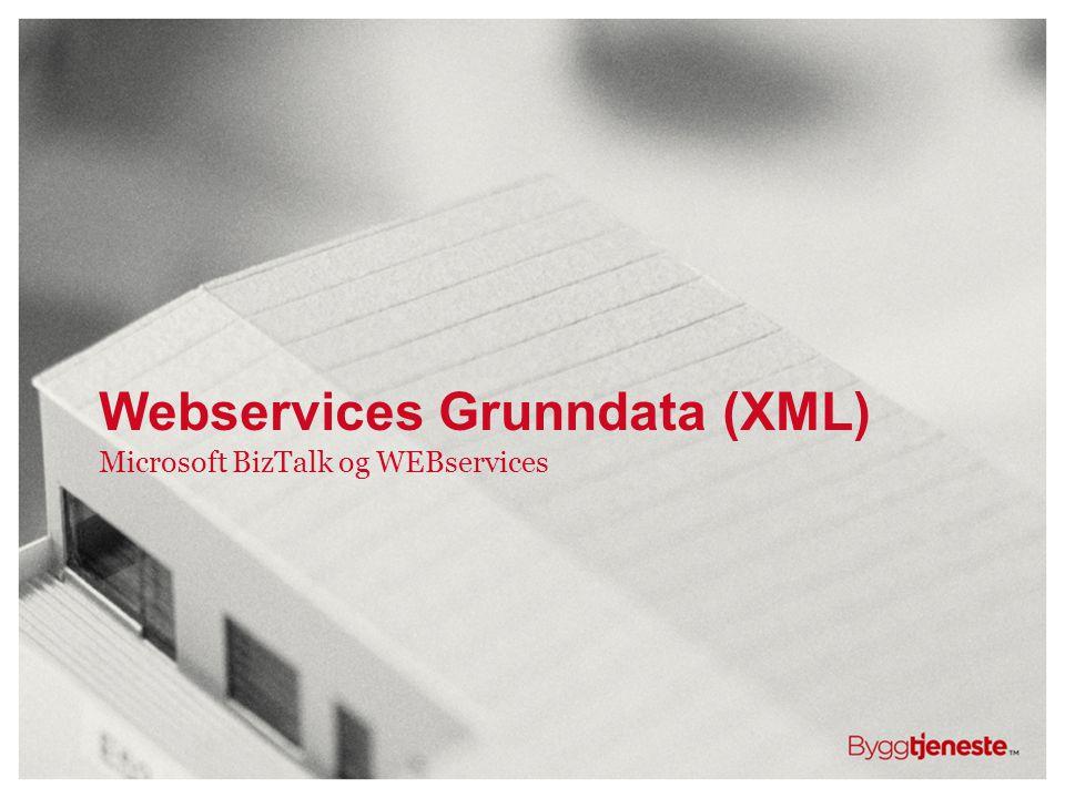 Microsoft BizTalk og WEBservices