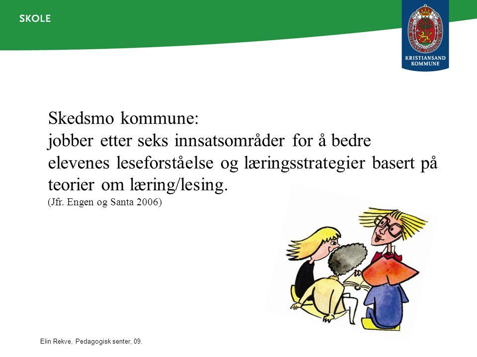 Skedsmo kommune: jobber etter seks innsatsområder for å bedre elevenes leseforståelse og læringsstrategier basert på teorier om læring/lesing.