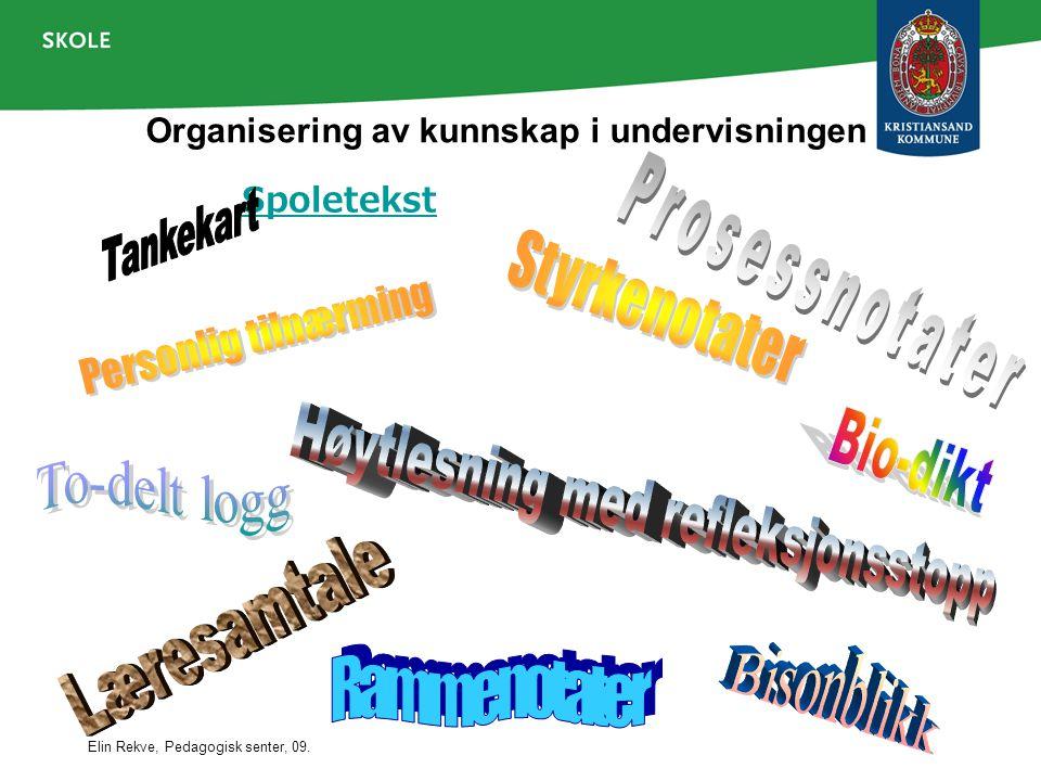 Organisering av kunnskap i undervisningen