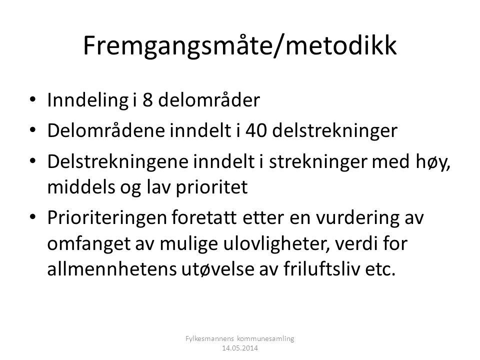 Fremgangsmåte/metodikk